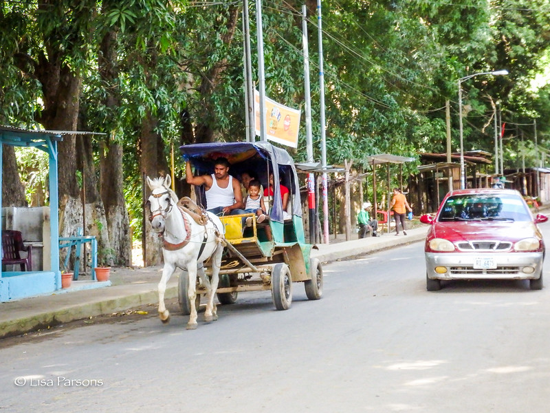 Transport by horse and buggy