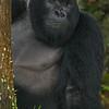 Rwanda-6260