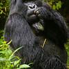 Rwanda-5142