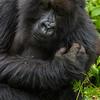 Rwanda-3598