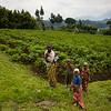 Rwanda-4683