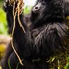 Rwanda14-8003