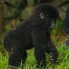 Rwanda-6266