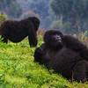 Rwanda-6073