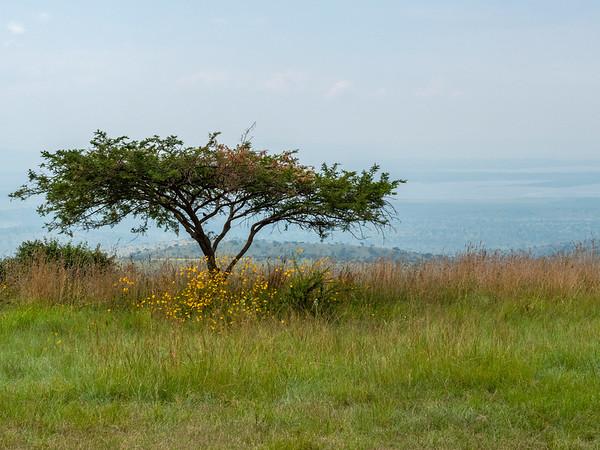 Akagera highlands