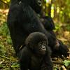 Rwanda14-4602