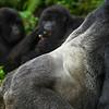 Rwanda-6357