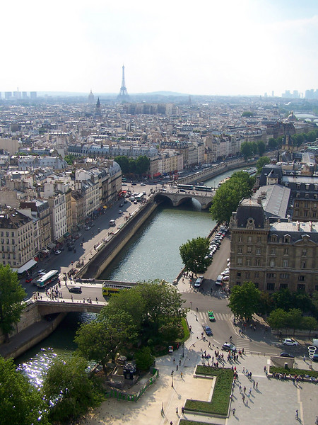 Paris from Notre Dame Cathedral