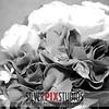 15-Flowers Rings-Kelsey Ryan 012