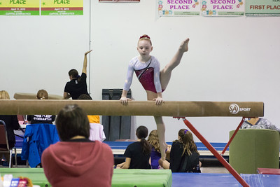 Eagle Gymnastics 2016