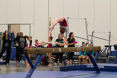 Eagle Gymnastics 2017