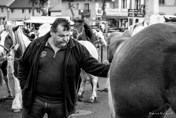 Chaque année, le 20 octobre, la foire aux chevaux rassemble des chevaux, des éleveurs, des maquignons et une foule de curieux et de photographes. Sur la grande place faynoise, les chevaux sont alignés, scrutés, brossés.  Les deux tiers sont de la race comtoise, destinés à rejoindre les rayons de boucherie. D'autres sont des chevaux de selle, des ânes, des mulets.  Les bâtons sont de sortie, les mains rugueuses s'appuient dessus et les brandissent pour diriger les bêtes récalcitrantes.