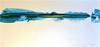 BlueStreak-Iorillo, stretched apx 30x60 canvas