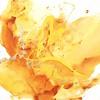 Posh Party II-Edmunds, 30x30 canvas