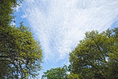 S. Sky Above 09