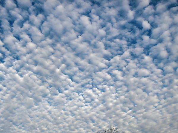 S. Cloud Show 33