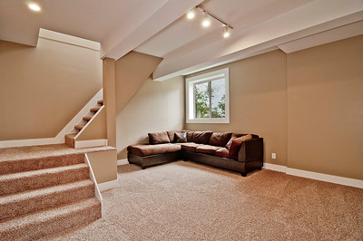 family room bsmt