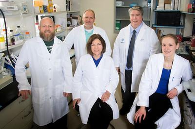 John M. Sullivan MD; PhD; Department of Ophthalmology; Associate Professor of Ophthalmology; University at Buffalo; 2015; Jason Myers PhD; Mark Butler MS; Zahra Fayazi DMV PhD; Danielle Polniak BS