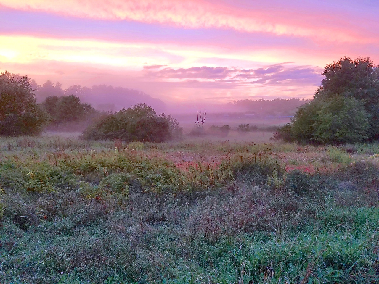 Sunrise at Heath Hen Meadow Brook, Stow, Massachusetts