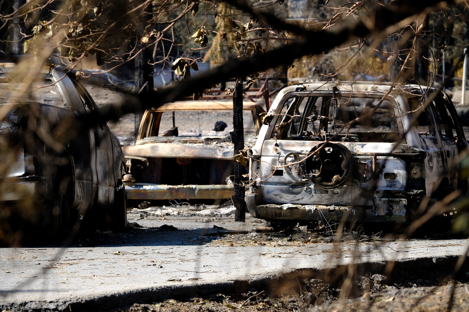 Redwood Fire 2017 - California