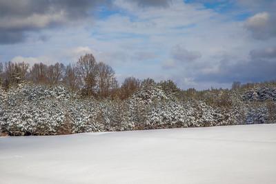Snowy field near Danbury, NC, followng 9+ inches of snow.