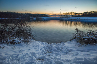 A bird flys by a snowy sunset at Lake Brandt in Greensboro NC