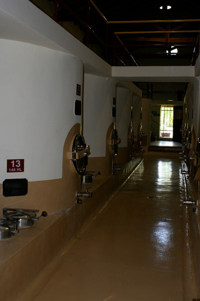 A tour of the cellar is a must when you visit any winery.