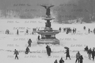 snow in New York City: Blizzard 2003 in Central Park