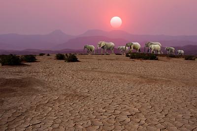 DAMARALAND - NAMIBIA