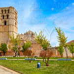 Zamora Cathedral in Spain by Via de la Plata
