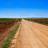 Via de la Plata way Guadiana vineyards Spain