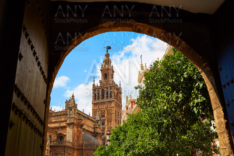 Seville cathedral Giralda tower Andalusia Spain