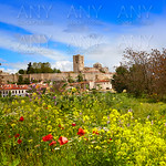 Zamora spring field skyline Spain