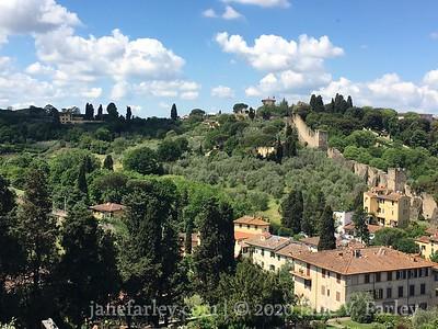 Florence Hills