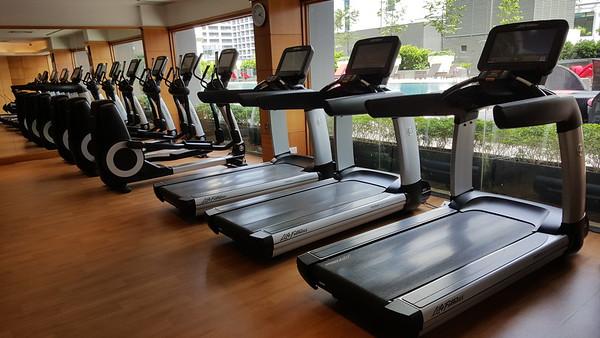 Gym, Level 4
