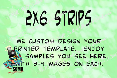 Layout2x6 Strips