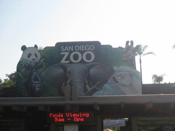 San Diego Zoo summer of 2005