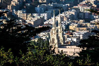 Richards___Early Morning View from Coit Tower