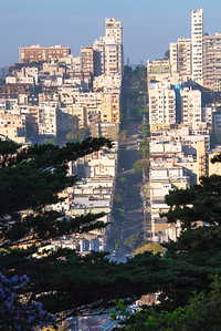 Richards___Lombard Street San Francisco