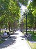 Plaza de Ceaser Chavez, downtown San Jose