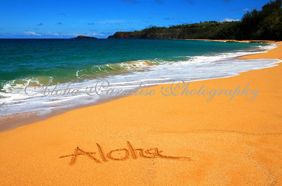 ALOHA FROM SECRET BEACH