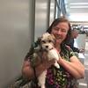 Sarah's breeder. Great Lakes Cotons - Pat Orth