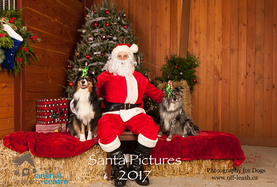 3497_SARC_OFF_LEASH_SANTA_2017