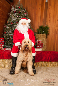 3529_SARC_OFF_LEASH_SANTA_2017