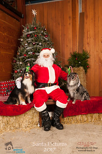 3494_SARC_OFF_LEASH_SANTA_2017