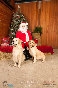 3521_SARC_OFF_LEASH_SANTA_2017