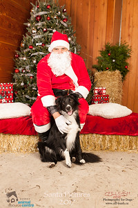 3474_SARC_OFF_LEASH_SANTA_2017