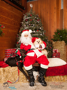 3491_SARC_OFF_LEASH_SANTA_2017