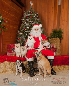 3509_SARC_OFF_LEASH_SANTA_2017