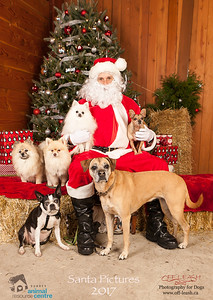 3513_SARC_OFF_LEASH_SANTA_2017